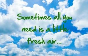 ae8746a7a02f7a4696b4bde3f740773b--good-ideas-sunny-days